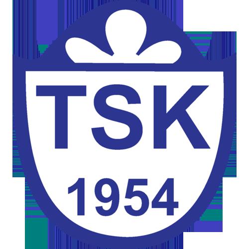 Tuzlaspor team logo