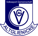 VSG Altglienicke team logo