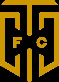 Cape Town City team logo