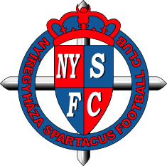Nyiregyhaza team logo