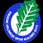 Ergene Velimese Spor team logo