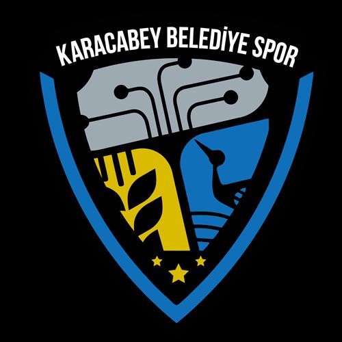 Karacabey Belediyespor team logo