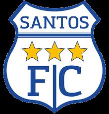 Santos De Nasca team logo