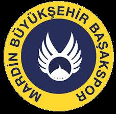 Mardin Basakspor team logo