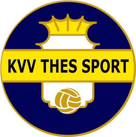 Thes Sport team logo