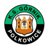Gornik Polkowice team logo