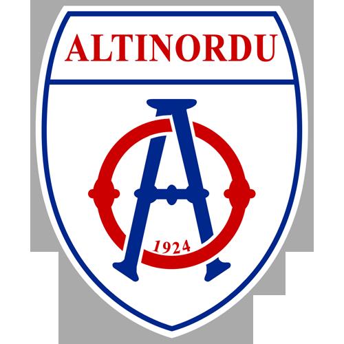 Altinordu team logo