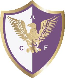 Fenix team logo