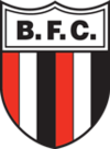 Botafogo SP team logo