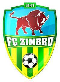 Zimbru Chisinau team logo