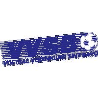 VVSB team logo
