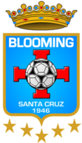 Blooming team logo