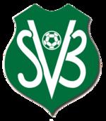 Suriname team logo