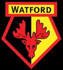 Watford team logo