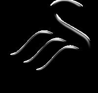 Swansea team logo