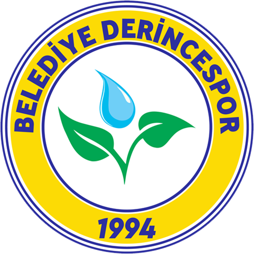 Derincespor team logo
