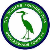 Biggleswade Town team logo