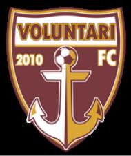 FC Voluntari team logo
