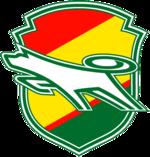 Jef United Chiba (w) team logo