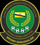Brunei team logo