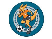 Icheon Daekyo (w) team logo