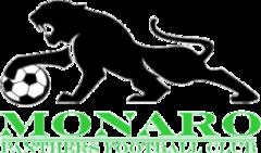 Monaro Panthers team logo