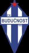 Buducnost Podgorica team logo
