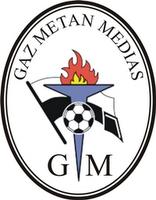 Gaz Metan Medias II team logo