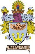 Taunton Town team logo