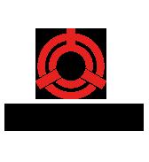 Tatung team logo