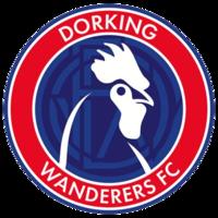 Dorking Wanderers team logo