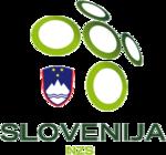 Slovenia team logo