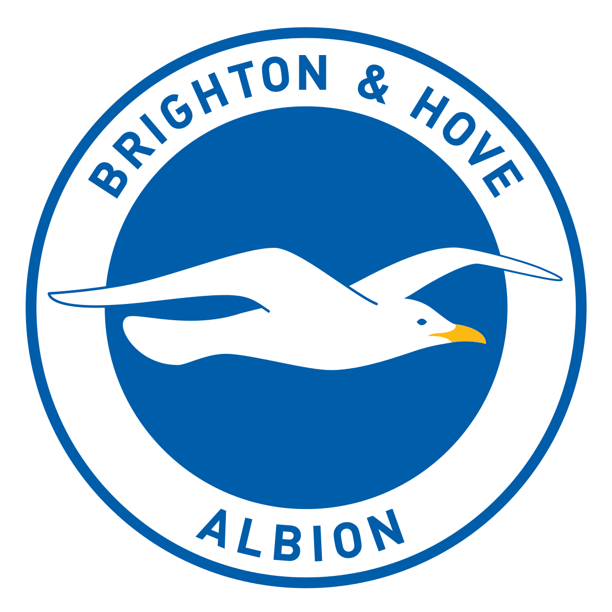 Brighton (w) team logo