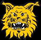 Ilves 2 team logo