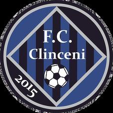 Academica Clinceni team logo