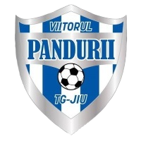 ACS Viitorul Panduri Targu team logo