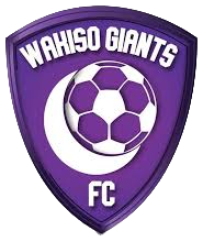 Wakiso Giants FC team logo