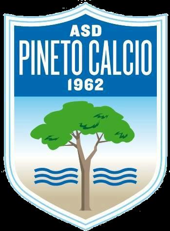 Pineto team logo