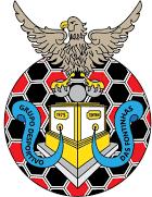Fontinhas team logo