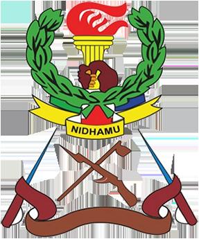 JKT Tanzania team logo