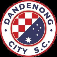 Dandenong City (u21) team logo