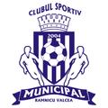 CSM Ramnicu Valcea team logo