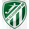 FC Gleisdorf 09 team logo