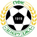 Dobrudzha team logo