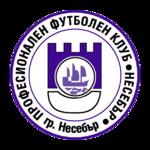 Nesebar team logo