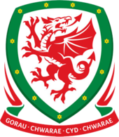 Wales (u19) team logo