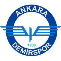 Ankara Demirspor team logo