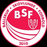 BSF team logo