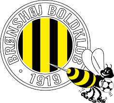 Bronshoj team logo